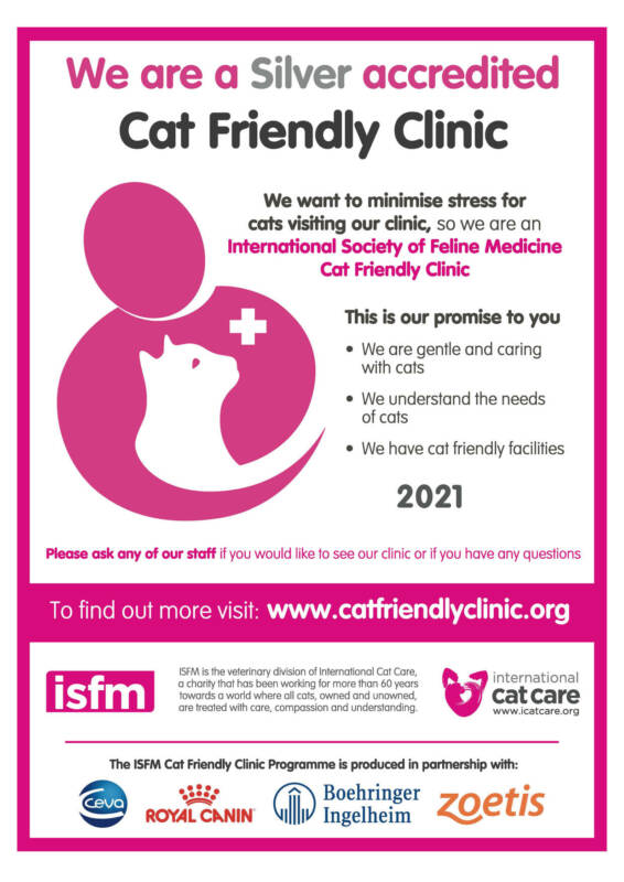 Cat Friendly Accreditation Achieved!